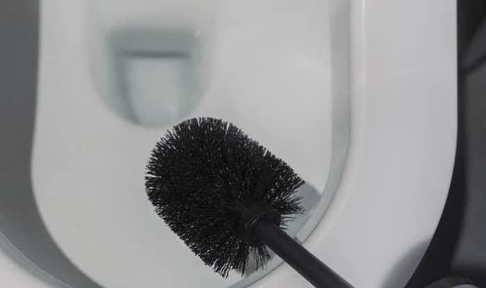 best rv toilet brush